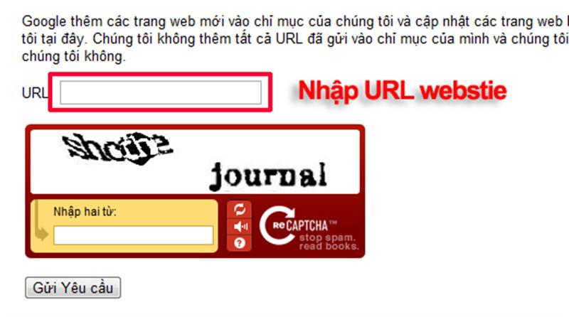 Cách đăng kí khai báo website với google đơn giản hiệu quả
