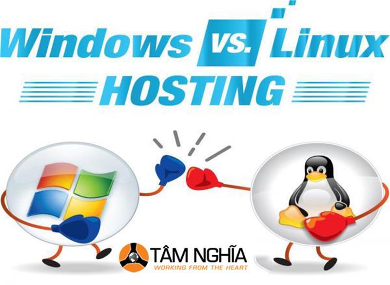 Nên thuê hosting hay tự xây dựng hệ thống server hosting